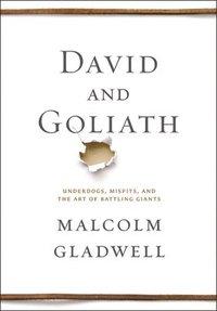 bokomslag David And Goliath