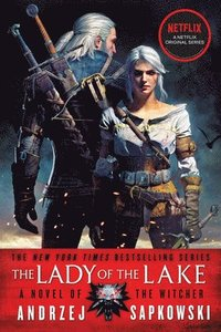 bokomslag The Lady of the Lake