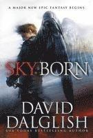 bokomslag Skyborn