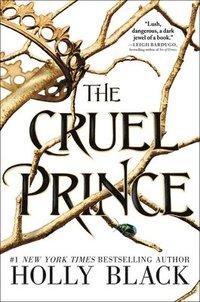 bokomslag Cruel Prince