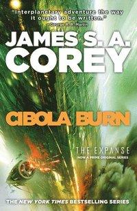 bokomslag Cibola Burn