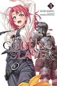 bokomslag Goblin slayer, vol. 3 (light novel)