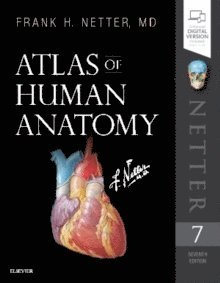 bokomslag Atlas of Human Anatomy