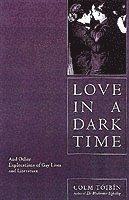 bokomslag Love in a Dark Time