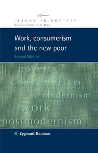 bokomslag Work, Consumerism and the New Poor