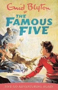 bokomslag Famous Five: Five Go Adventuring Again