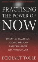 bokomslag Practising The Power Of Now: Meditations, Exercises and Core Teachings from The Power of Now