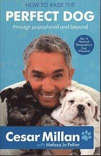 bokomslag How To Raise The Perfect Dog