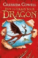 bokomslag How to train your dragon - book 1