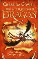 bokomslag How to Train Your Dragon: How to Twist a Dragon's Tale