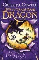 bokomslag Heros guide to deadly dragons - book 6