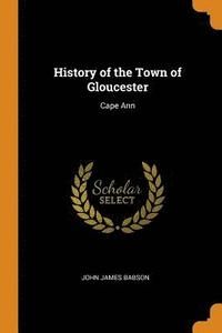 bokomslag History of the Town of Gloucester