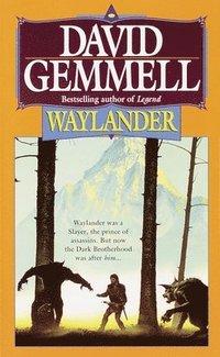 bokomslag Waylander