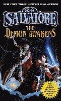 bokomslag Demon Awakens