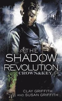 bokomslag Shadow revolution