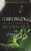 bokomslag Darkling Child