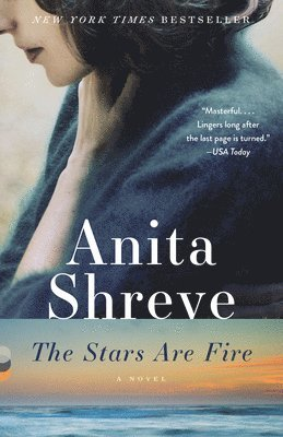 bokomslag The Stars Are Fire