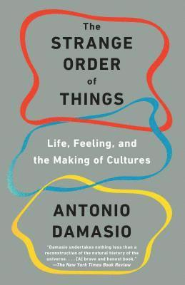 bokomslag The Strange Order of Things: Life, Feeling, and the Making of Cultures