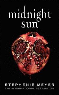 bokomslag Midnight Sun