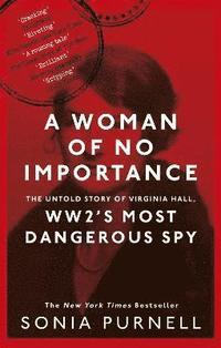 bokomslag A Woman of No Importance