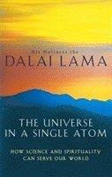 bokomslag The Universe In A Single Atom
