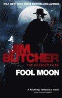 bokomslag Fool Moon