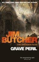 bokomslag Grave Peril