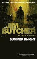 bokomslag Summer Knight