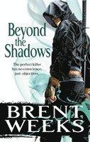 bokomslag Beyond the shadows