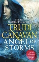 bokomslag Angel of Storms: Book 2 of Millennium's Rule
