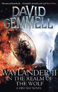 bokomslag Waylander II