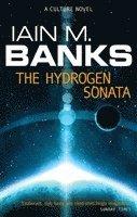 bokomslag The Hydrogen Sonata