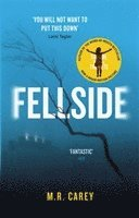 Fellside