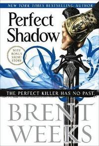 bokomslag Perfect Shadow