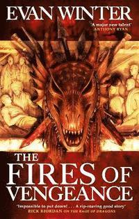 bokomslag The Fires of Vengeance