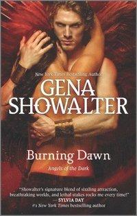 bokomslag Burning Dawn