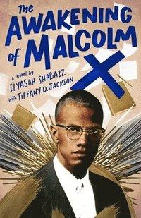 bokomslag Awakening Of Malcolm X