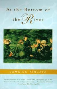 bokomslag At The Bottom Of The River