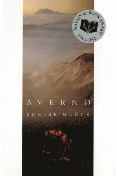 bokomslag Averno: Poems