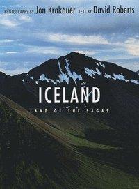 bokomslag Iceland: Land of the Sagas