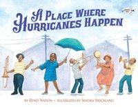 bokomslag Place Where Hurricanes Happen