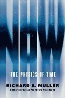 bokomslag Now: The Physics of Time
