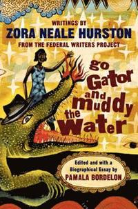 bokomslag Go Gator and Muddy the Water