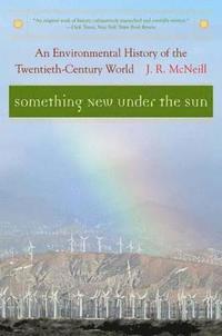 bokomslag Something new under the sun - an environmental history of the twentieth-cen