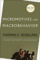 bokomslag Micromotives and Macrobehavior