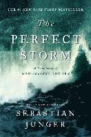 bokomslag The Perfect Storm