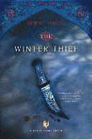 bokomslag The Winter Thief