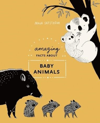 bokomslag Amazing Facts About Baby Animals