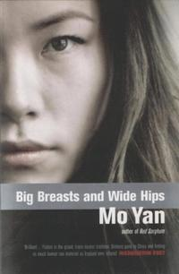 bokomslag Big Breasts and Wide Hips