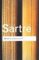 bokomslag What is Literature?